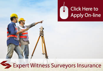 expert witness surveyors liability insurance